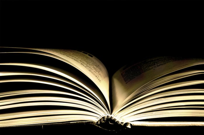 logo_books